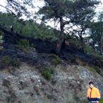 Muğla'da 2 dönüm orman ve 25 dönüm sazlık alan yandı