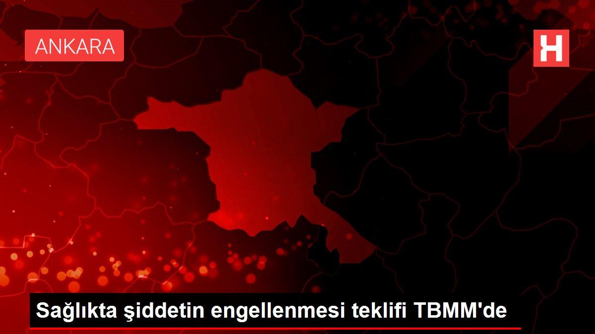 Sağlıkta şiddetin engellenmesi teklifi TBMM'de