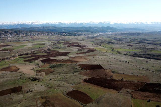 Gümüşhane'de 20 yıldır ekilmeyen tarlalara aspir bitkisi ekilmeye başlandı