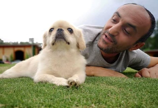Yılmaz Erdoğan, Acun Ilıcalı'yı aradı: Ersin' köpeğinin öldüğünü söylersek adamı kaybedebiliriz