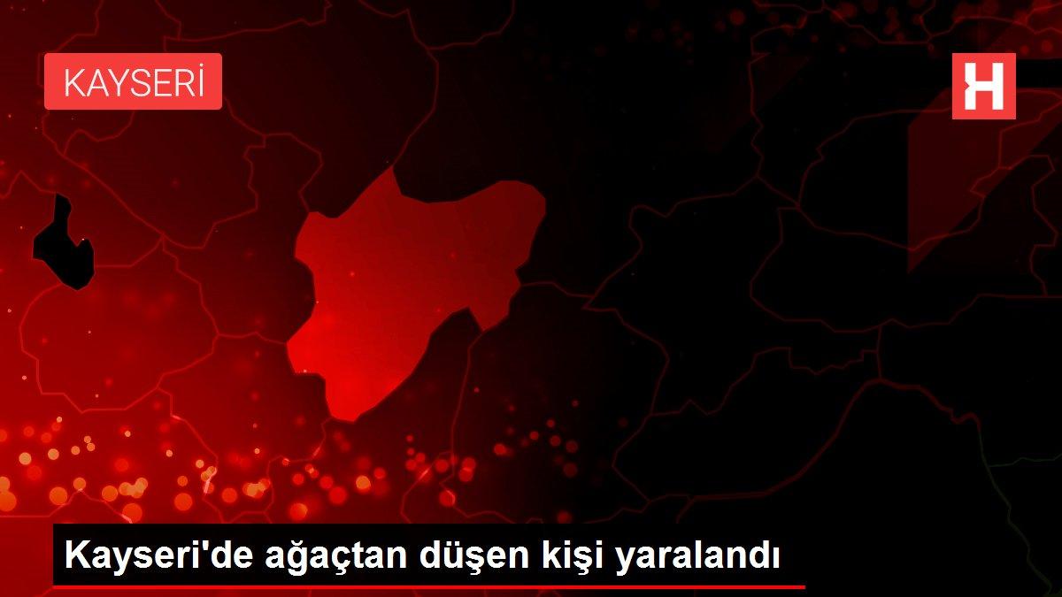 Kayseri'de ağaçtan düşen kişi yaralandı