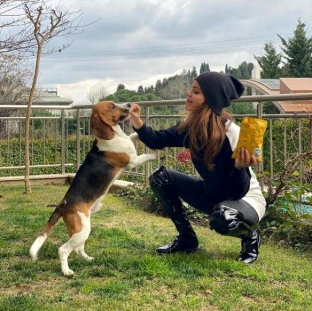Kerem Alışık ve Hilal Altınbilek'in aşkını köpekleri ele verdi
