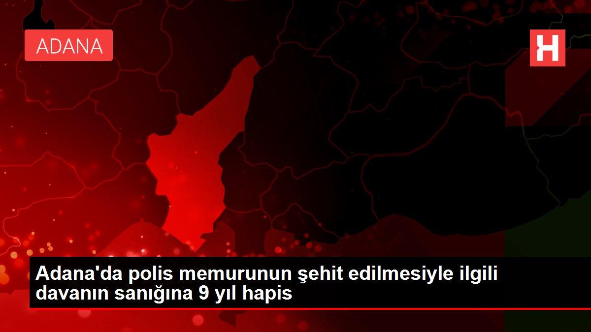 Adana'da polis memurunun şehit edilmesiyle ilgili davanın sanığına 9 yıl hapis