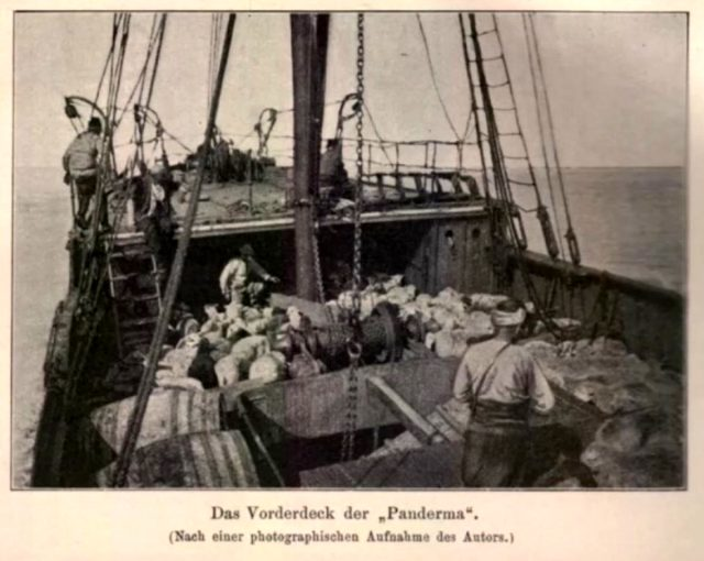 Atatürk'ün Samsun'a çıktığı geminin tek fotoğrafı! Celal Şengör canlı yayında hikayesini anlattı