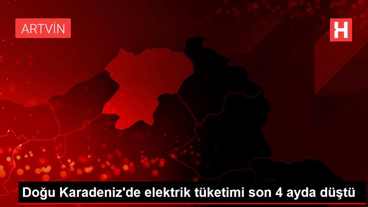 Doğu Karadeniz'de elektrik tüketimi son 4 ayda düştü