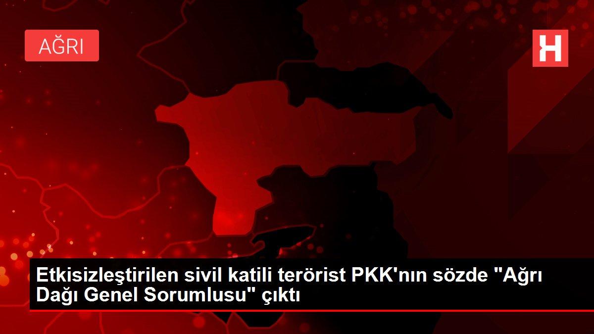 Etkisizleştirilen sivil katili terörist PKK'nın sözde