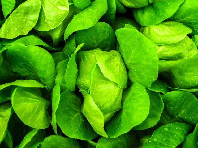 Evde kilo almada tüketebileceğiniz sağlıklı besinler nelerdir? Kilo aldırmayan besinler nelerdir?