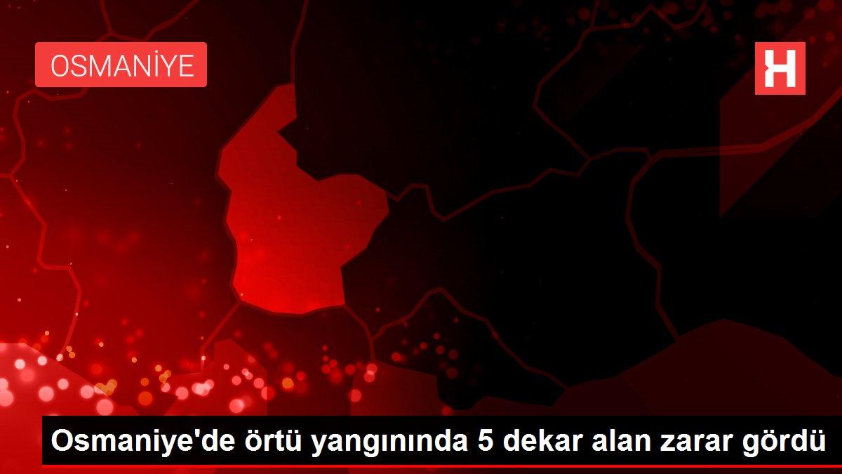 Osmaniye'de örtü yangınında 5 dekar alan zarar gördü