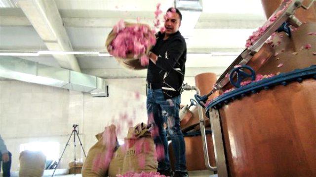 Şarkıcı Berdan Mardini, memleketi Mardin'e gül suyu fabrikası kurdu