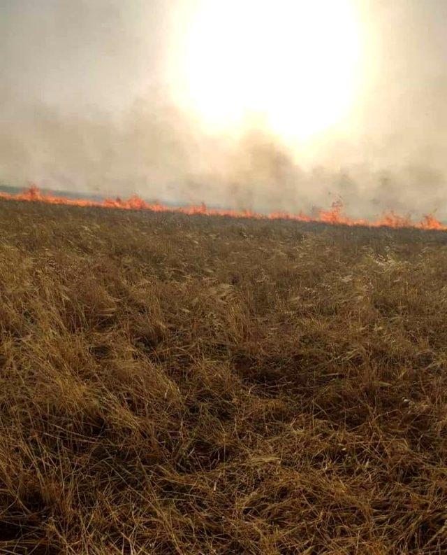 YPG/PKK'lı teröristler, Deyrizor'da sivillere ait tarım arazilerini yaktı