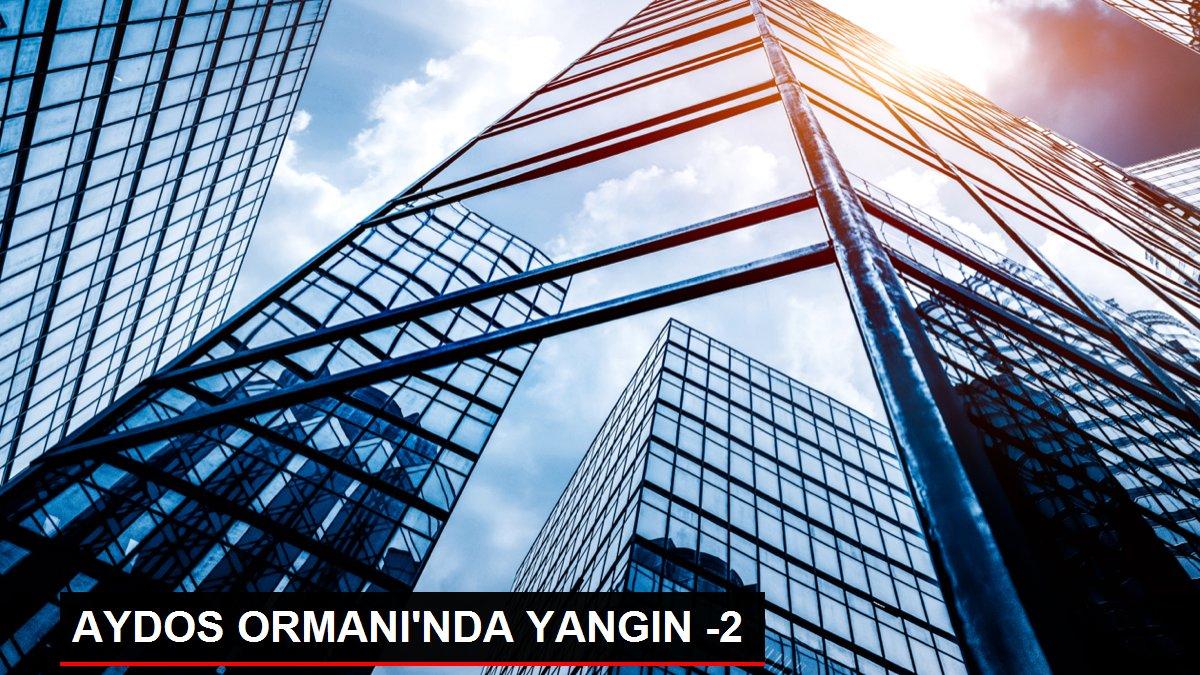 AYDOS ORMANI'NDA YANGIN -2