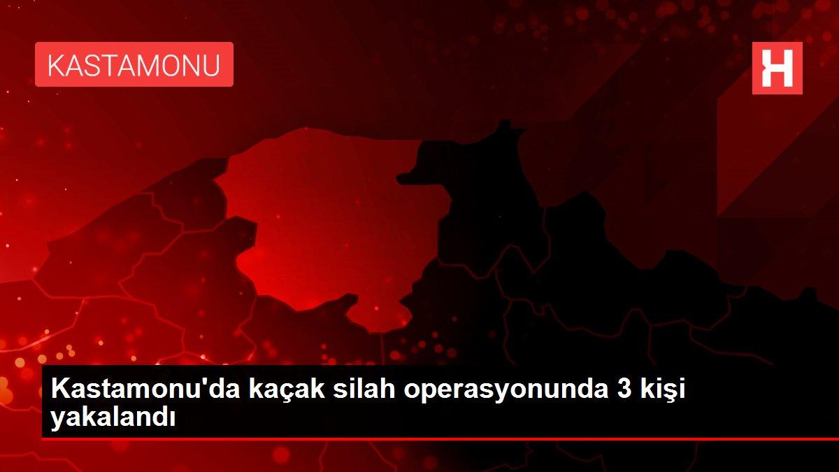 Kastamonu'da kaçak silah operasyonunda 3 kişi yakalandı