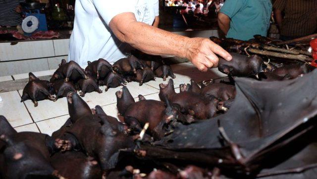 Wuhan'da vahşi hayvan yemek yasaklandı