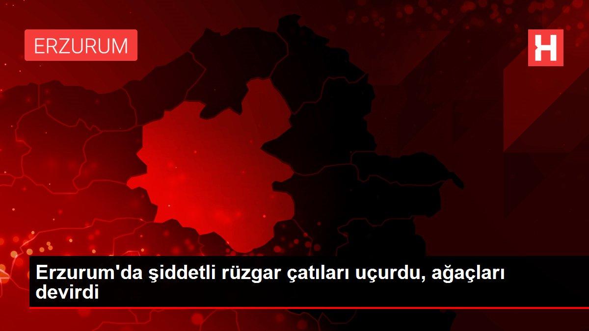 Erzurum'da şiddetli rüzgar çatıları uçurdu, ağaçları devirdi