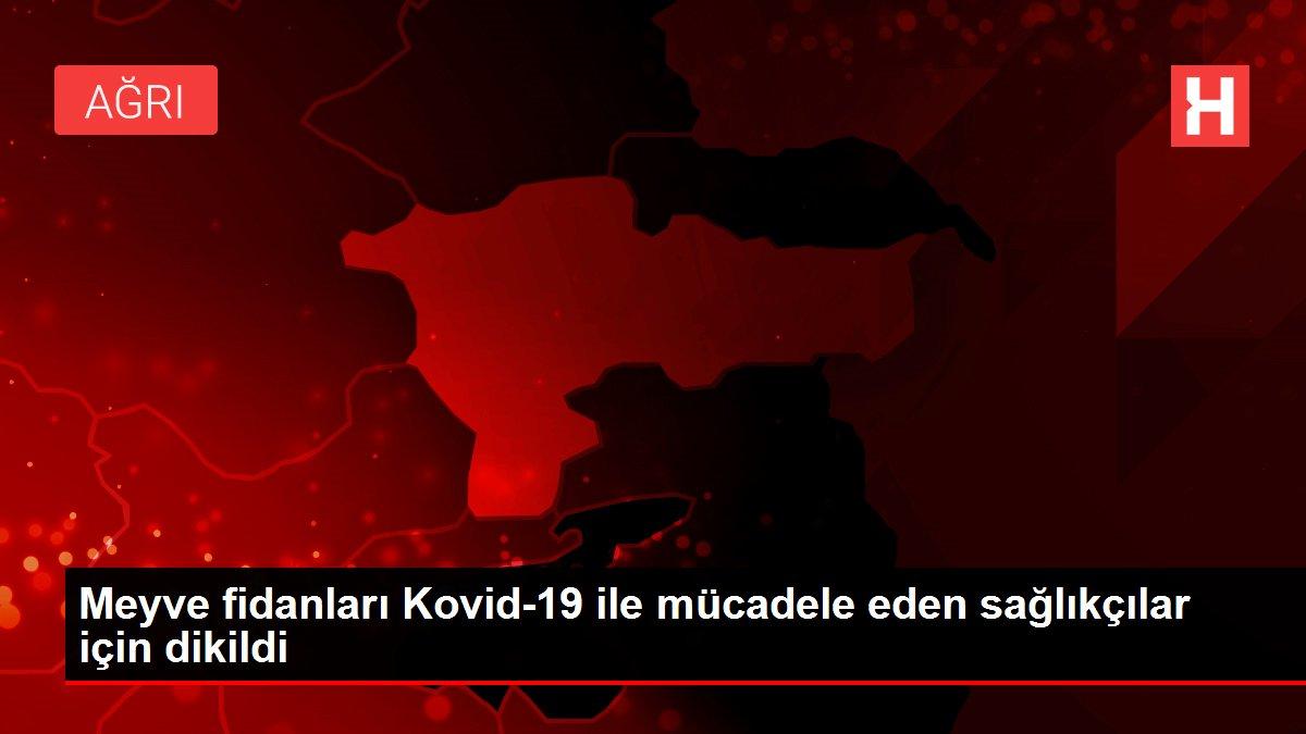 Meyve fidanları Kovid-19 ile mücadele eden sağlıkçılar için dikildi