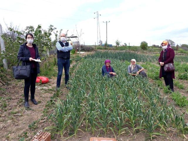 Kırklareli'de tarımsal istatistik çalışmaları TÜİK sisteminde