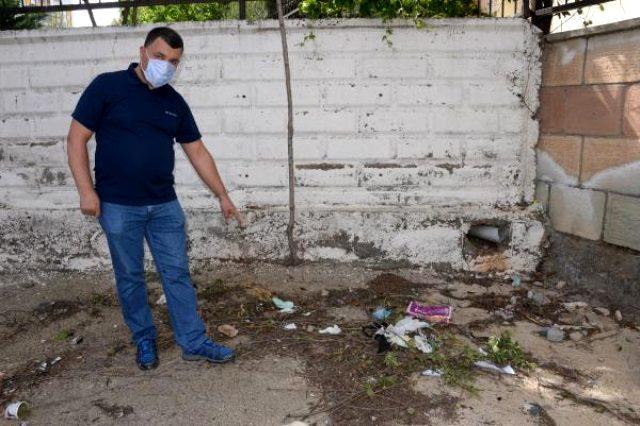 Prof. Dr. Ali Satar salgında yeni tehlikeye dikkat çekti: Sinek ve böcekler koronavirüsü taşıyabilir