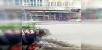 MUŞ Fırtınanın devirdiği ağaç caddeyi kapattı
