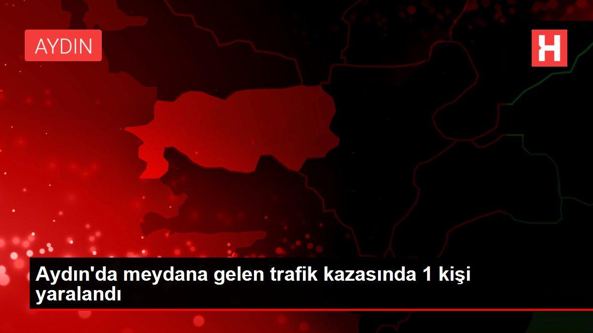 Aydın'da meydana gelen trafik kazasında 1 kişi yaralandı