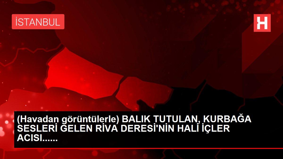 (Havadan görüntülerle) BALIK TUTULAN, KURBAĞA SESLERİ GELEN RİVA DERESİ'NİN HALİ İÇLER ACISI......