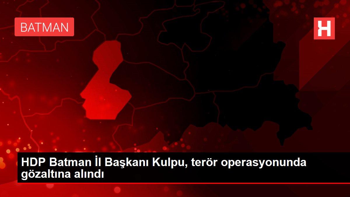 HDP Batman İl Başkanı Kulpu, terör operasyonunda gözaltına alındı