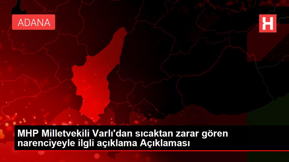 MHP Milletvekili Varlı'dan sıcaktan zarar gören narenciyeyle ilgli açıklama Açıklaması