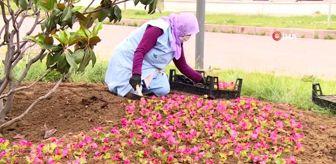 Mustafa Dündar: Osmangazi'de 200 bin çiçek toprakla buluşuyor