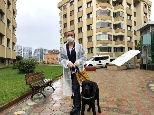 Görme engelli bireylerin can yoldaşı; Rehber Köpekler