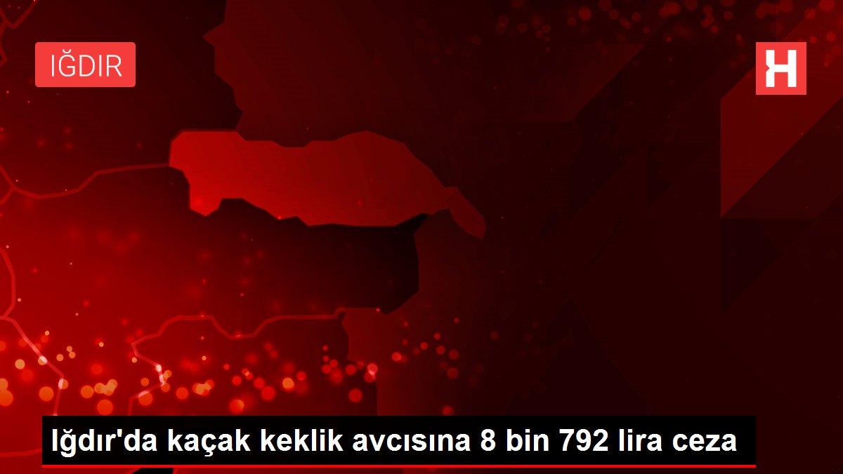 Son dakika güncel: Iğdır'da kaçak keklik avcısına 8 bin 792 lira ceza