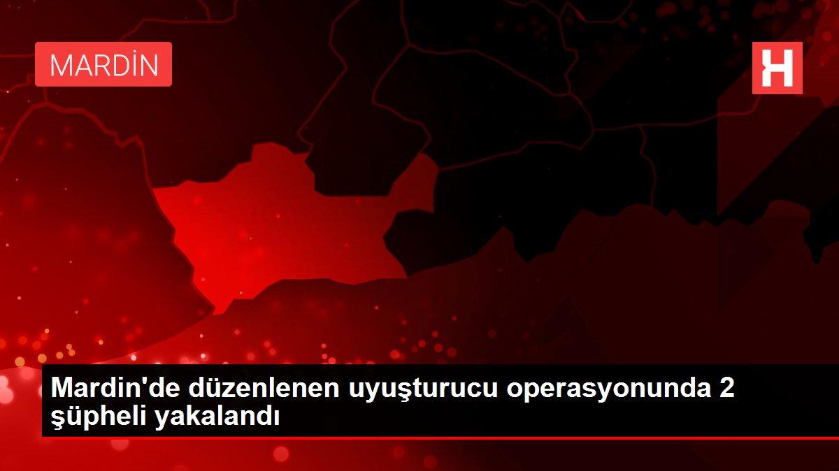 Mardin'de düzenlenen uyuşturucu operasyonunda 2 şüpheli yakalandı