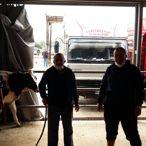 Keşan'daki canlı hayvan pazarı açıldı