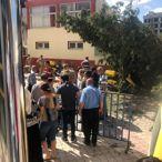 Osmaniye'de üzerine ağaç dalı düşen PTT çalışanı yaralandı