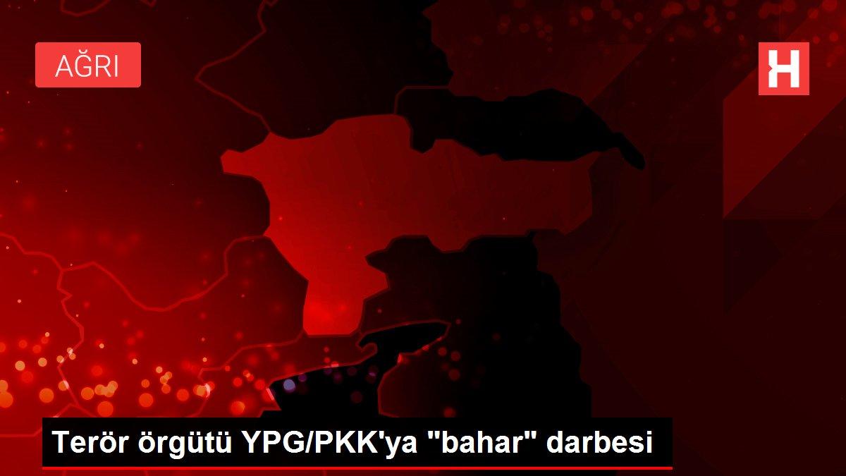 Son Dakika: Terör örgütü YPG/PKK'ya