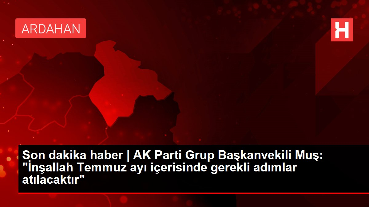 Son dakika haber | AK Parti Grup Başkanvekili Muş: 'İnşallah Temmuz ayı içerisinde gerekli adımlar atılacaktır'