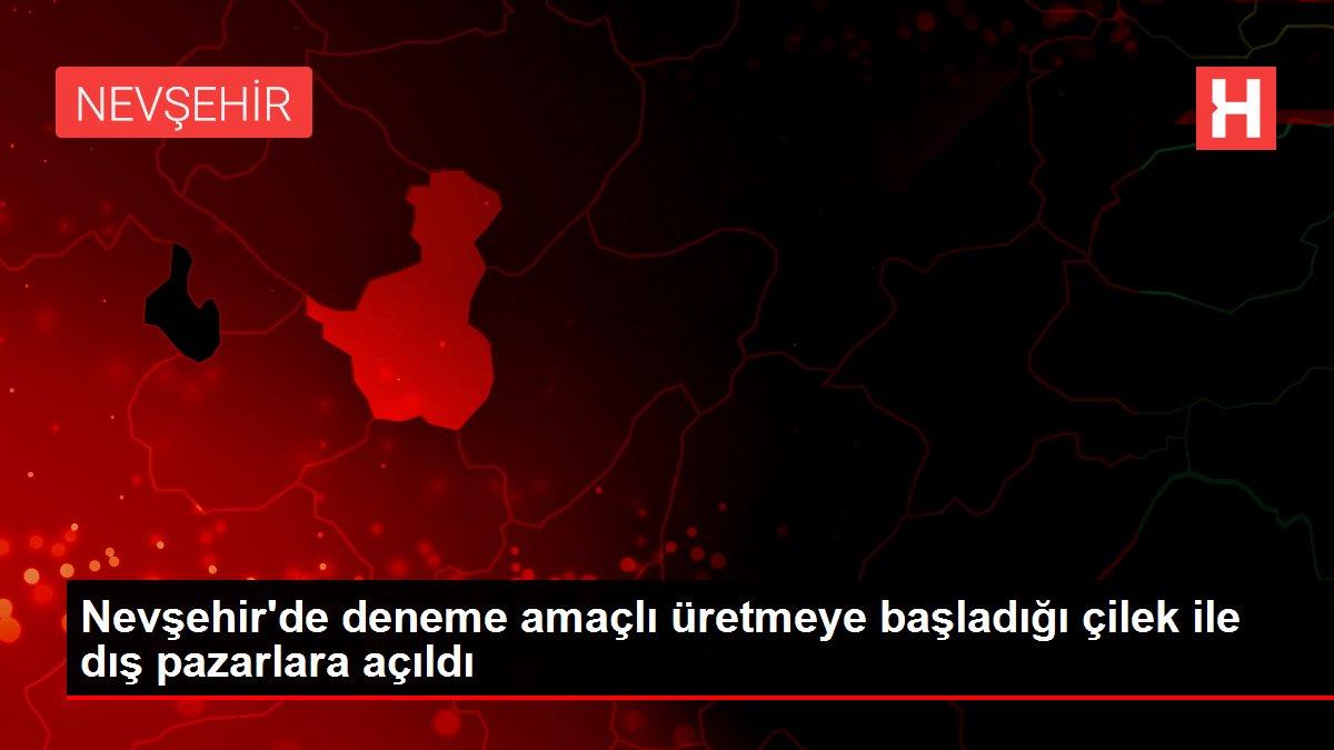 Nevşehir'de deneme amaçlı üretmeye başladığı çilek ile dış pazarlara açıldı