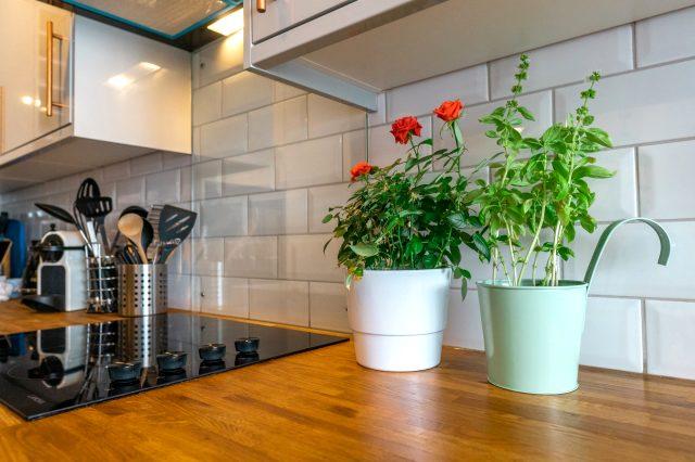 5 adımda tasarruflu mutfak dekorasyonu! Mutfak dekorasyonunun püf noktaları!