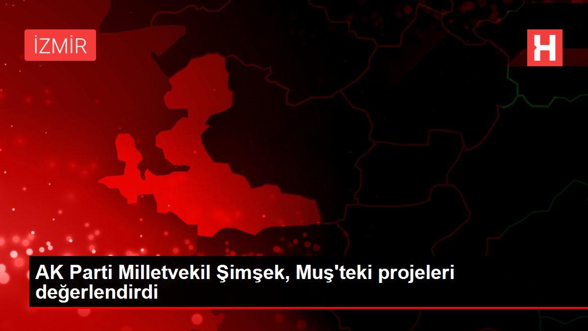 AK Parti Milletvekil Şimşek, Muş'teki projeleri değerlendirdi