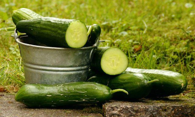 Salatalık diyeti nasıl yapılır? 3 günde 1 kilo verdiren salatalık diyeti!