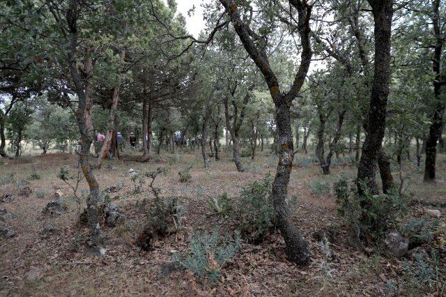 Yunanların 99 yıl önce yakarak katlettiği 83 Türkün mezar yerleri bulundu