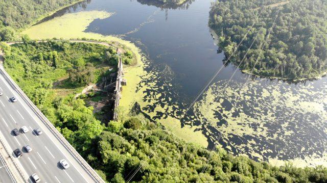 İstanbul'a su sağlayan barajın üzeri yeşil tabakayla kaplandı