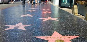 Benedict Cumberbatch: Dr. Mehmet Öz, ABD'deki Hollywood Şöhretler Yolu'na adı yazılacak ilk Türk oldu