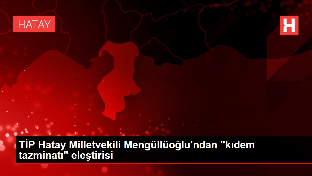 TİP Hatay Milletvekili Mengüllüoğlu'ndan