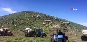 Yollar açıldı, çiftçiler yaylaya akın etti