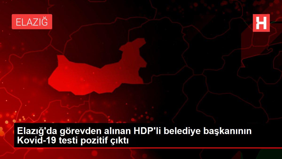Elazığ'da görevden alınan HDP'li belediye başkanının Kovid-19 testi pozitif çıktı