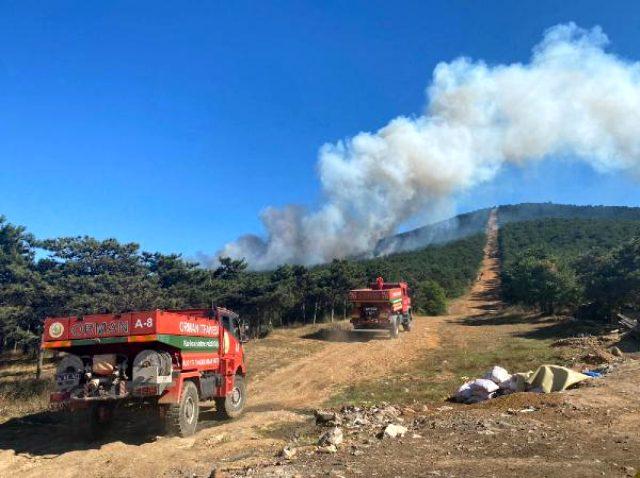 Son Dakika: İstanbul'da orman yangını çıktı, itfaiye müdahale ediyor