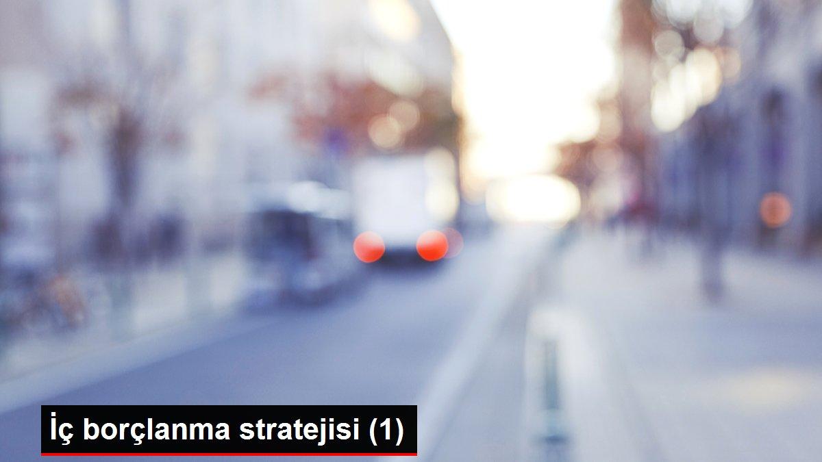 İç borçlanma stratejisi (1)