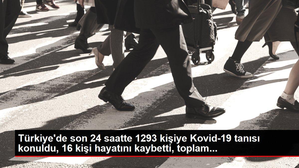 Türkiye'de son 24 saatte 1293 kişiye Kovid-19 tanısı konuldu, 16 kişi hayatını kaybetti, toplam...