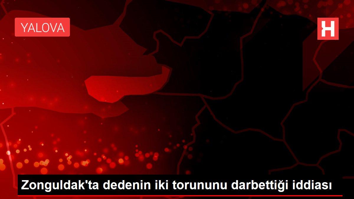 Zonguldak'ta dedenin iki torununu darbettiği iddiası