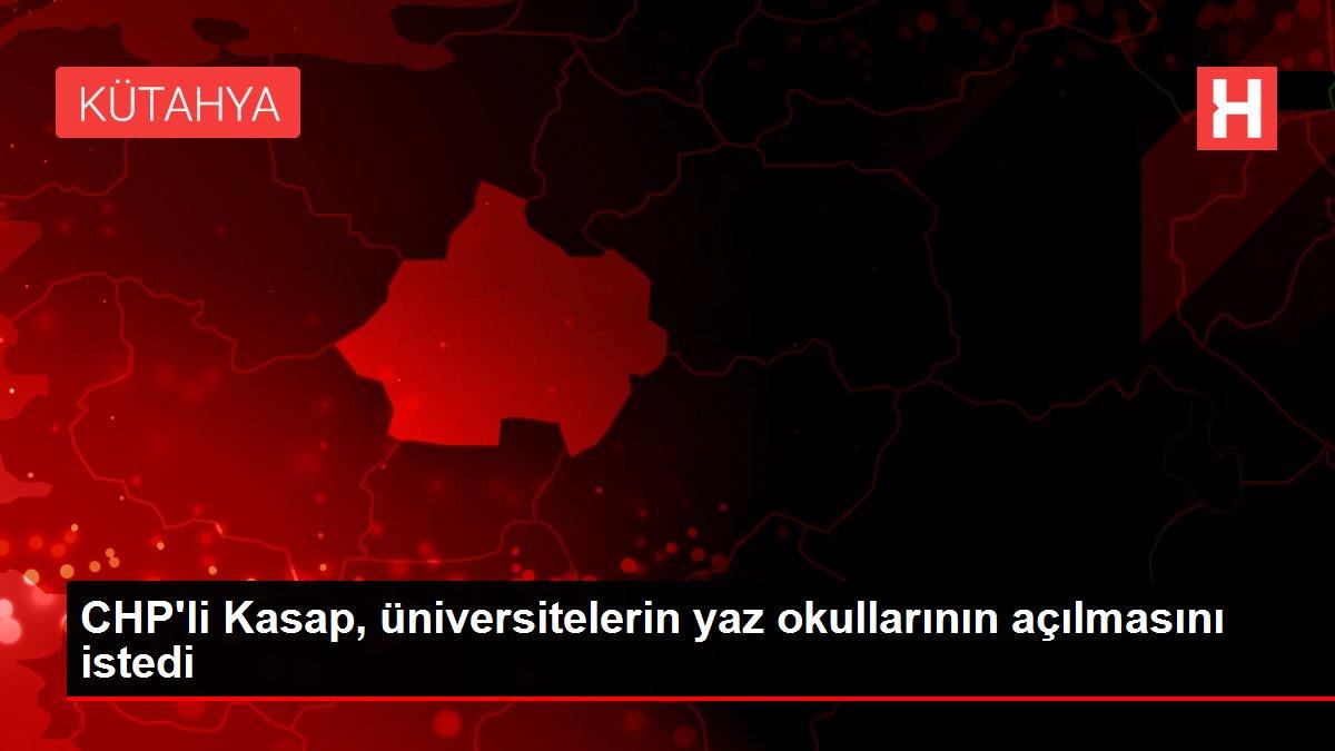 CHP'li Kasap, üniversitelerin yaz okullarının açılmasını istedi