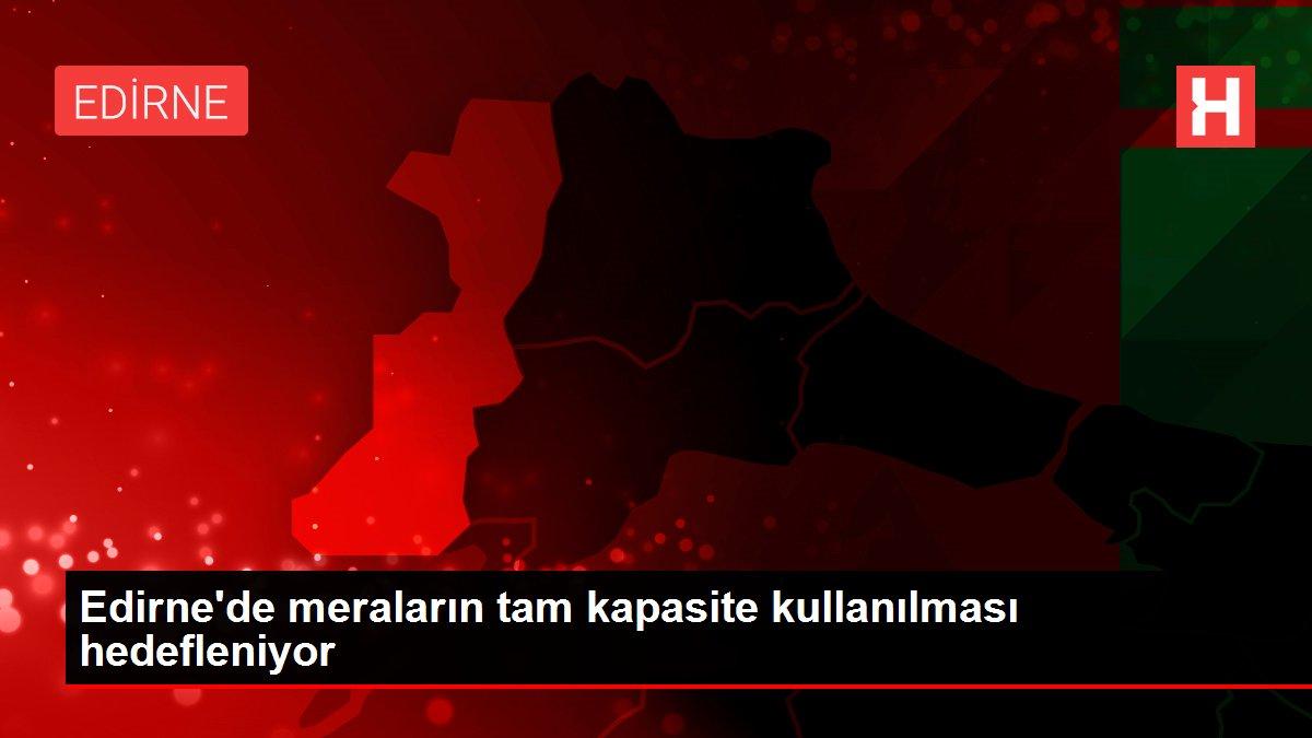 Son dakika haberi! Edirne'de meraların tam kapasite kullanılması hedefleniyor